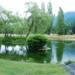 cultus-cottages-pond-2