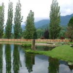 cultus-cottages-pond-1