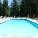 cultus-cottages-treehouse-pools-2